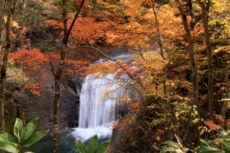 プチマルシェin白扇の滝を開催します!